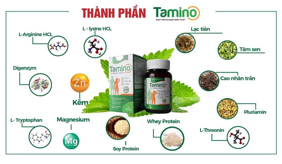 Thành phần của viên uống tăng cân Tamino